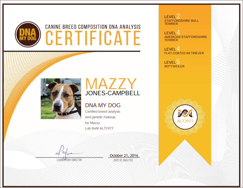 IBDNA UK DNA My Dog Certificate